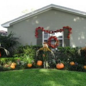 Lawn Decoration Ideas for Halloween