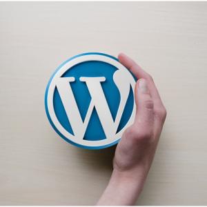 Ten Benefits of a WordPress Business Website